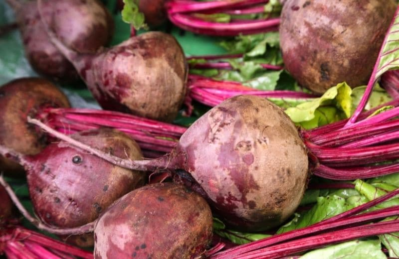 beets for juicing